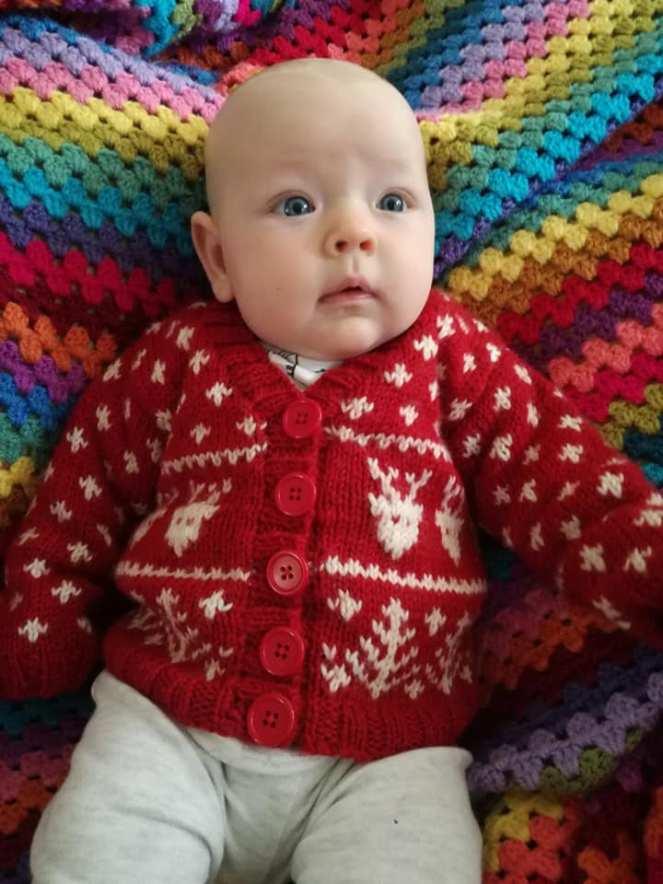 Christmas sven cardigan